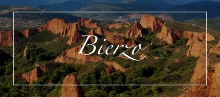 vinos-bierzo